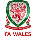 Wales vs Hungary Soccer Betting Tips